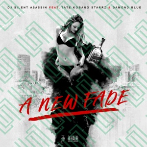 DJ Silent Asassin - New Fade ( Feat Tate Kobang, Starrz and Damond Blue ) [feat. Damond Blue, Starrz & Tate Kobang] [lyrics] - Single Mp3 Download