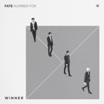FATE NUMBER FOR - Single