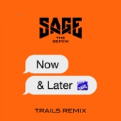 Now and Later (TRAILS Remix) - Single