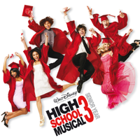 Various Artists - High School Musical 3 - Senior Year (Music From the Motion Picture) artwork
