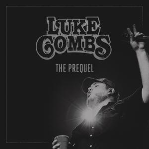 Luke Combs Beer Never Broke My Heart  Luke Combs album songs, reviews, credits