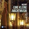 Nikolaus Harnoncourt & Concentus Musicus Wien - Eine kleine Nachtmusik