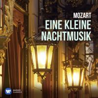 Nikolaus Harnoncourt & Concentus Musicus Wien - Eine kleine Nachtmusik artwork