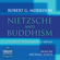 Robert G. Morrison - Nietzsche and Buddhism: A Study in Nihilism and Ironic Affinities (Unabridged)