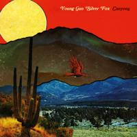 Young Gun Silver Fox - Canyons artwork