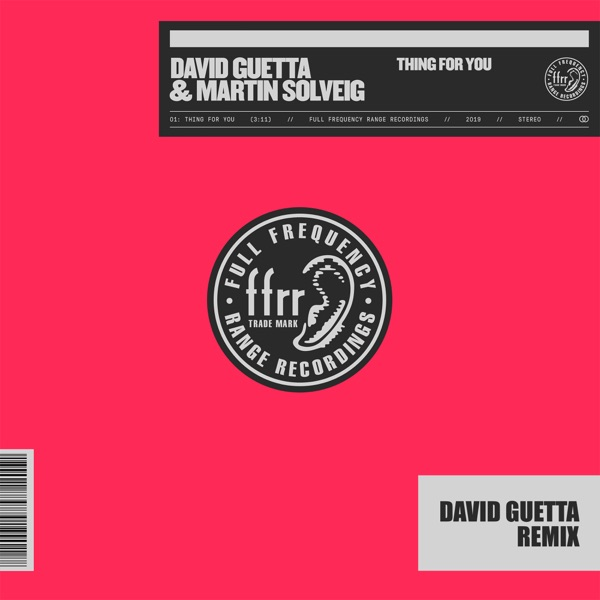 Thing for You (David Guetta Remix) [Extended] - Single