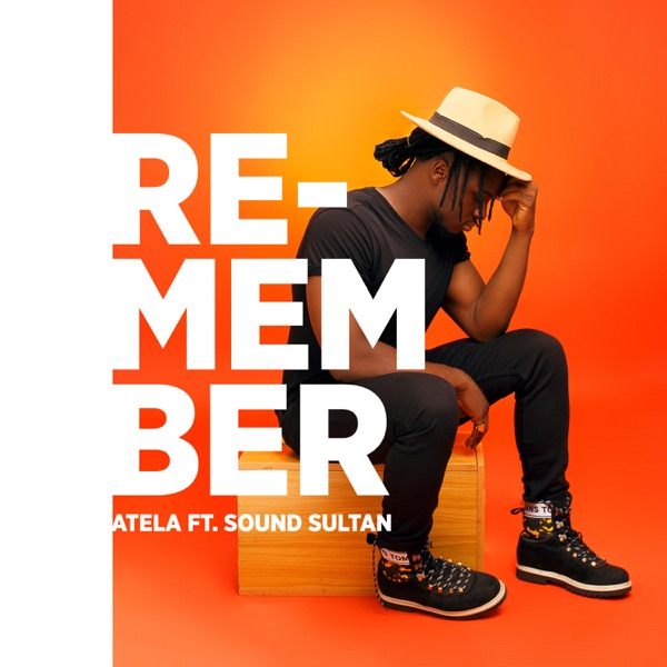 Remember (feat. Sound Sultan) - Single