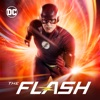 The Flash: Seasons 1-5 wiki, synopsis