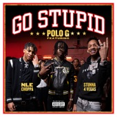 Go Stupid artwork