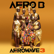 Afrowave 3 - Afro B