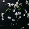 SYML - Meant to Stay Hid artwork