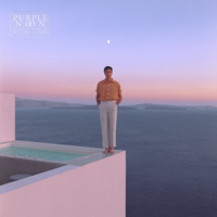 Washed Out - Purple Noon artwork