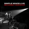 Big Music Tour 2015 - Simple Minds