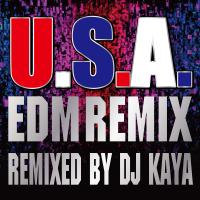 DA PUMP - U.S.A. (EDM Remix) [Remixed by DJ KAYA] artwork