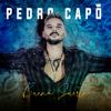 Buena Suerte - Pedro Capó mp3