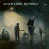 Avishai Cohen & Big Vicious - Big Vicious Grafik
