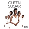 Queen Sugar, Season 4 - Synopsis and Reviews