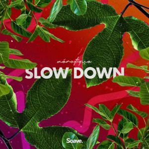 Aérotique - Slow Down