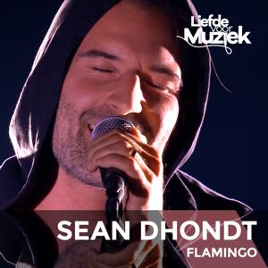 Sean Dhondt - Flamingo (Uit Liefde Voor Muziek)