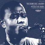 Teodross Avery - After the Rain