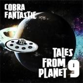 Cobra Fantastic - Don't Resist