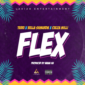 Lakizo Entertainment, Ceeza Milli, Terri & Bella Shmurda - Flex