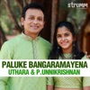 Paluke Bangaramayena - Single