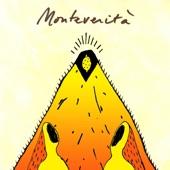 Polycool - Monteverità