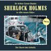 Die neuen Fälle, Fall 43: Der Sturm des Unheils - Sherlock Holmes
