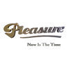 Pleasure - Now Is the Time  artwork