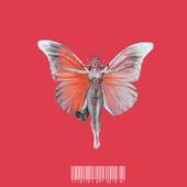 Motýľ artwork
