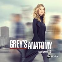 Télécharger Grey's Anatomy, Saison 16 (VOST) Episode 21