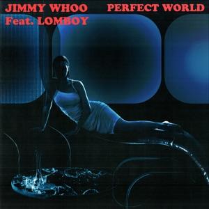 Perfect World - Single