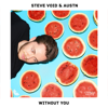 Steve Void & AUSTN - Without You artwork