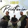 3 SUD EST - Prietenia artwork