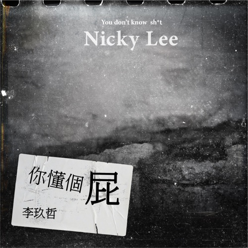 Nicky Lee – You don't know sh*t (feat. Flowsik) – Single