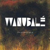 Wanubalé - Strange Heat