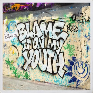 blink-182 Blame It On My Youth M4A