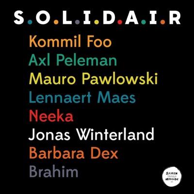 S.O.L.I.D.A.I.R - Single - Kommil Foo