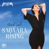 Saqaara Rising