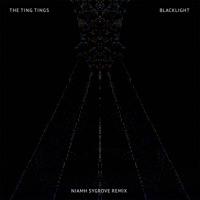 Blacklight (Niahm Remix) [feat. Nizhm] - Single Mp3 Download