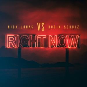 Nick Jonas & Robin Schulz - Right Now