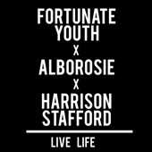 Fortunate Youth - Live Life (feat. Alborosie & Harrison Stafford)