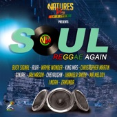 Natures Way Ent - Soul Reggae Again