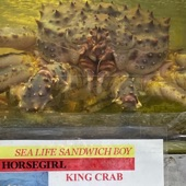 Horsegirl - Sea Life Sandwich Boy