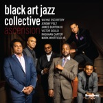 Black Art Jazz Collective - Twin Towers