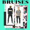 Dylan Owen - Bruises (feat. Abhi the Nomad) artwork