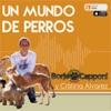 En Un Mundo de Perros con Borja Capponi