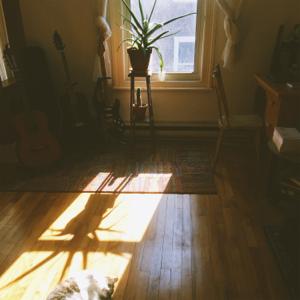 Simon Lachance - Pâlir au soleil (les arcs-en-ciel)