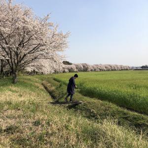 HoSoVoSo - 春を待つ僕ら